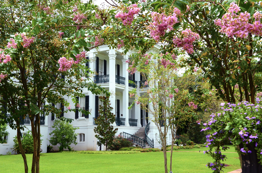 Mansion with Crepe Myrtles